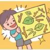 初めての自由研究をサポート!ママ&パパ向け別冊『HugKum』8月号