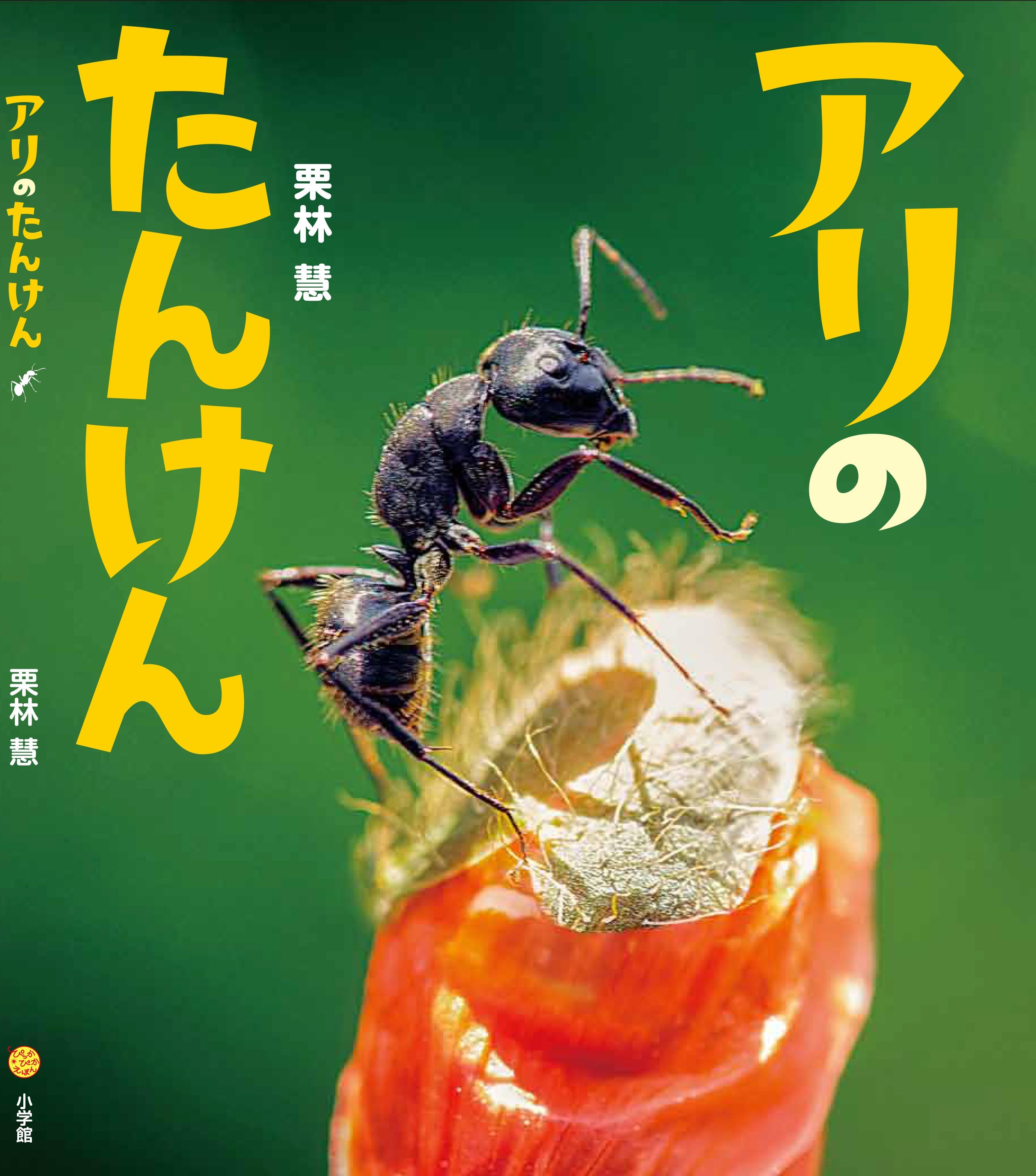 栗林慧の絵本『アリのたんけん』