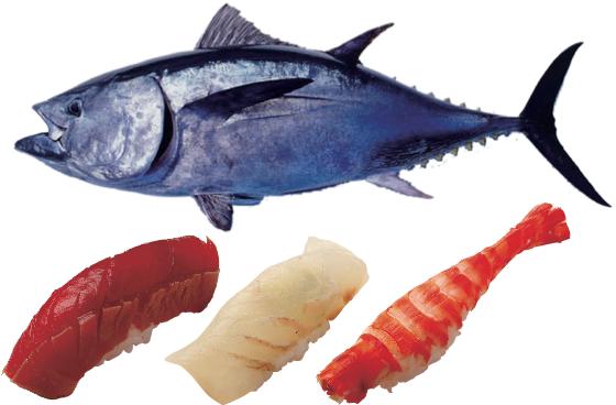 170518_07_sushi