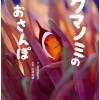 広部俊明、人気女優・羽田美智子の写真絵本『クマノミのおさんぽ』