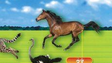 馬、ダチョウ、ライオン、「短距離走」で競争すると、ビリはあの動物!