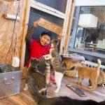 1年で100匹もの猫の里親を見つけるスーパー小学生!  (『小学一年生』4月号連動企画)