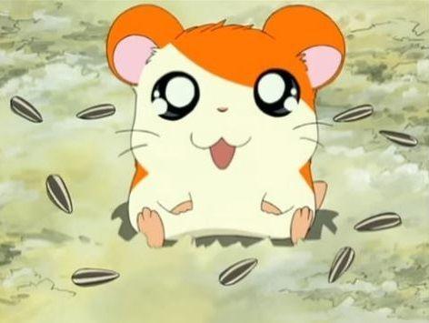 ハム アニメ とっとこ 太郎