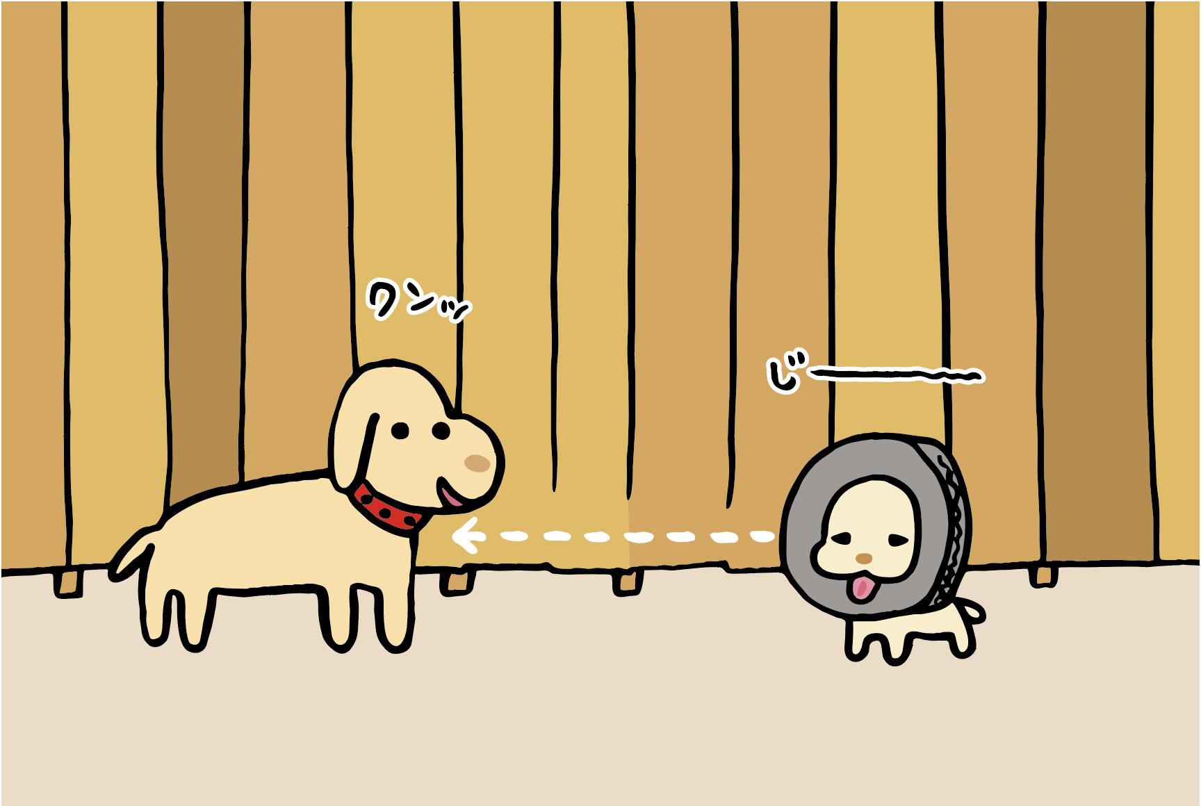 トホホな犬 「タイヤ比べ」 2コマ目