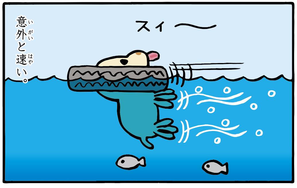 トホホな犬 「犬かき」 4コマ目