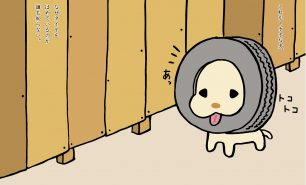 トホホな犬 「タイヤ比べ」