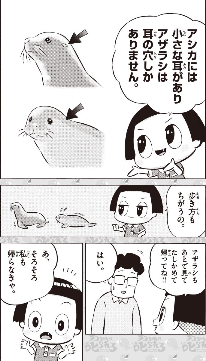 まんが『チコちゃんに叱られる!』 水族館で叱られる! 7コマ目