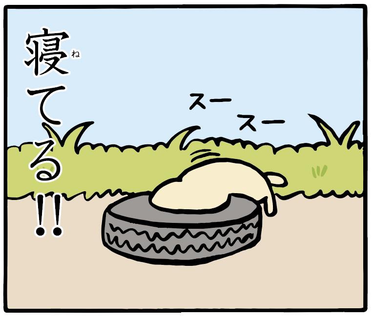 トホホな犬 「パン」 10コマ目