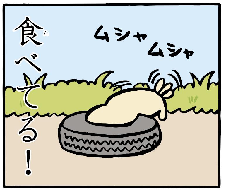 トホホな犬 「パン」 8コマ目