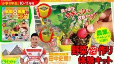 おうちで野菜作りを体験できる!『小学8年生』10・11月号付録で農業にチャレンジ!